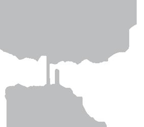 Palm Tree Studios